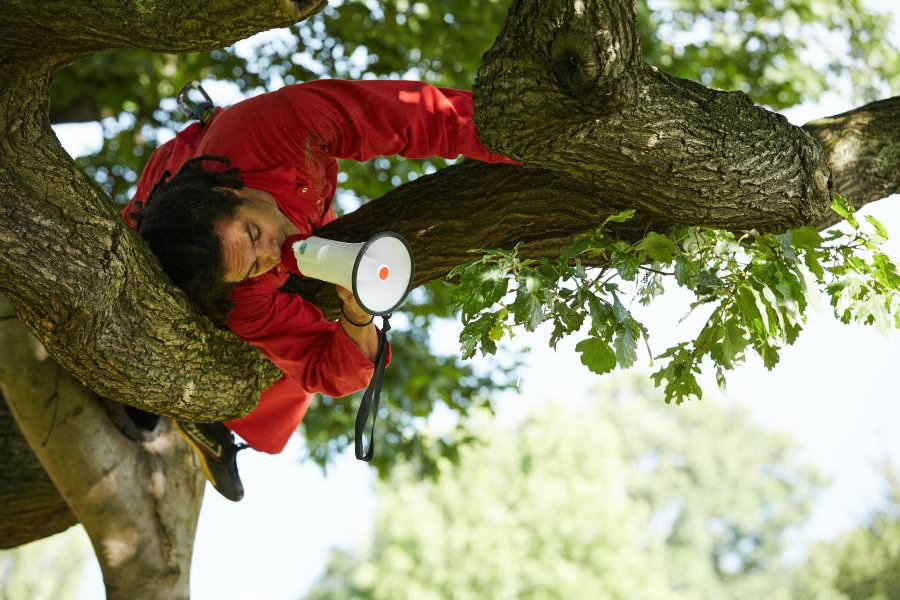 A man perches on a branch high in a tree, calling through a megaphone