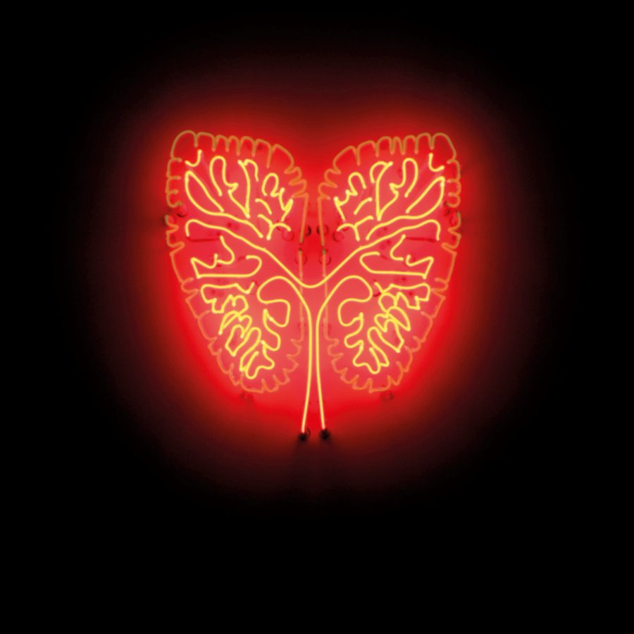 An image of a heart installed on a gallery wall made using red and orange neon tubes