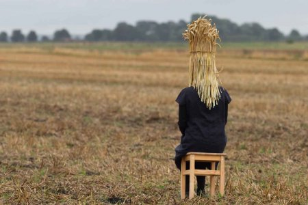 In a harvested field a figure sites on a wooden stool with their head covered by a sheath of corn.