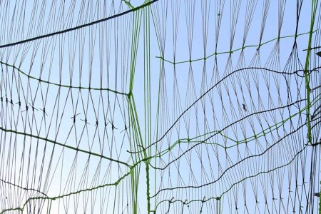 Detail view of a fence made of tied string