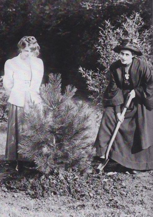 A black and white photograph from early 20th century showing two women planting a fir tree