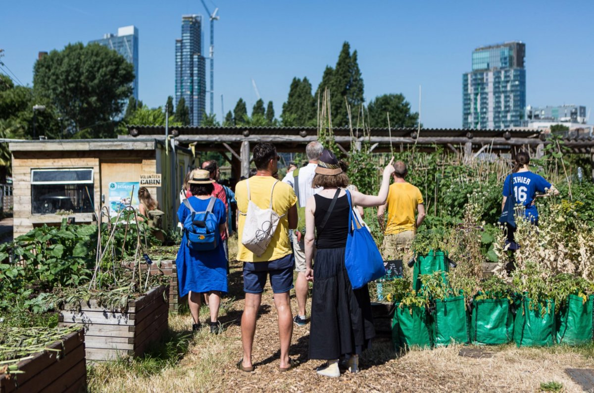 People standing in an urban garden with their backs turned away