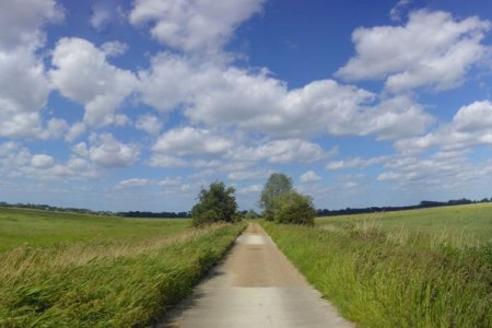 road in the middle of green fields with blue skies and white clouds